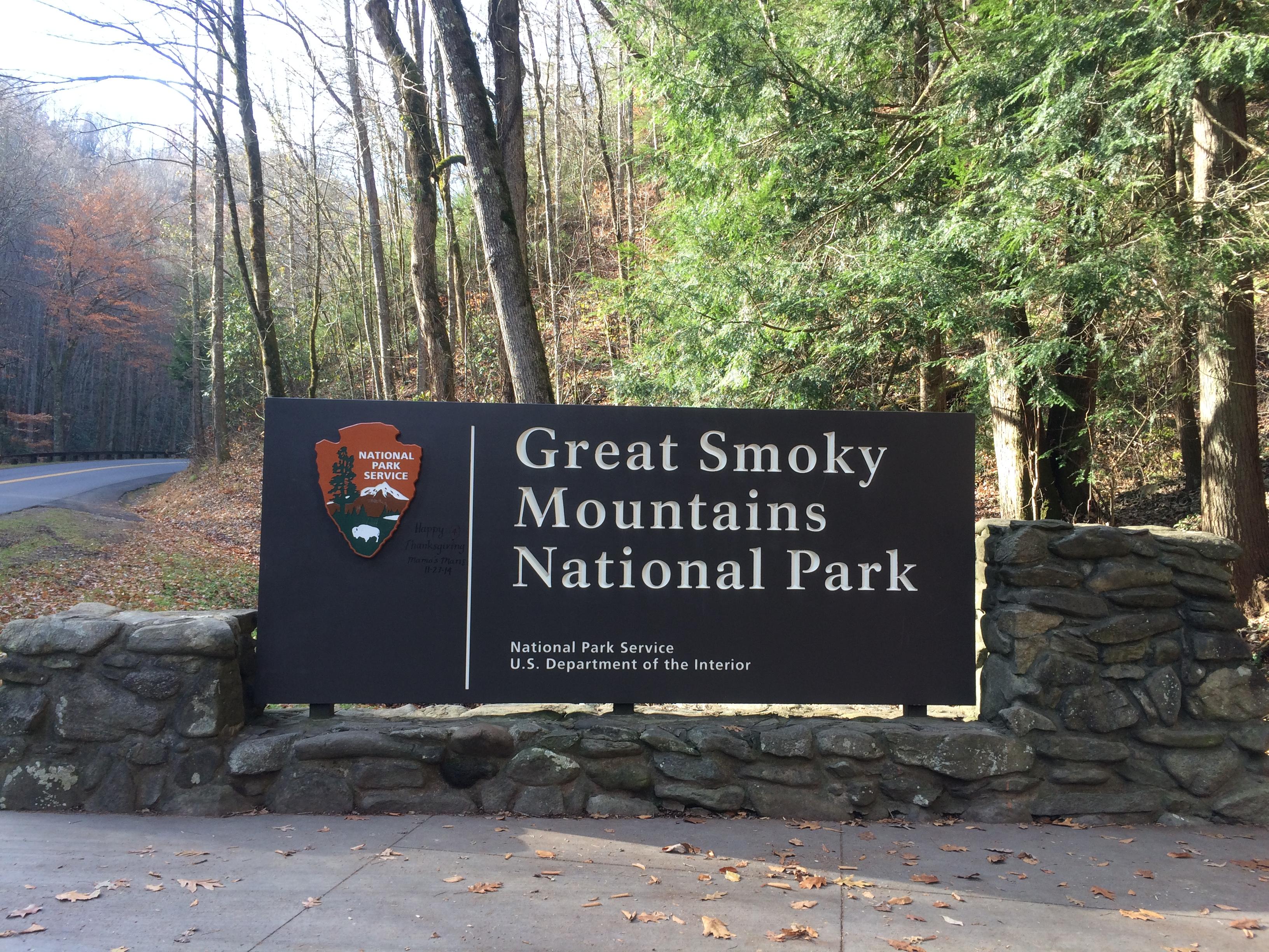 [全米NO.1]グレートスモーキーマウンテン国立公園の魅力とは??