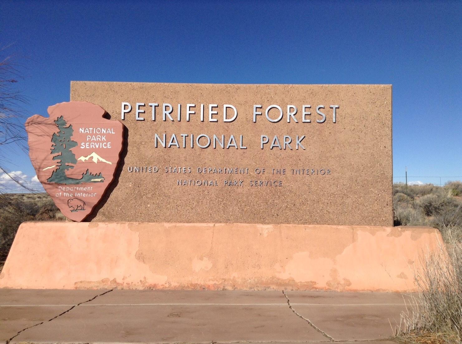 化石の森国立公園は想像以上に神秘的な場所だった。