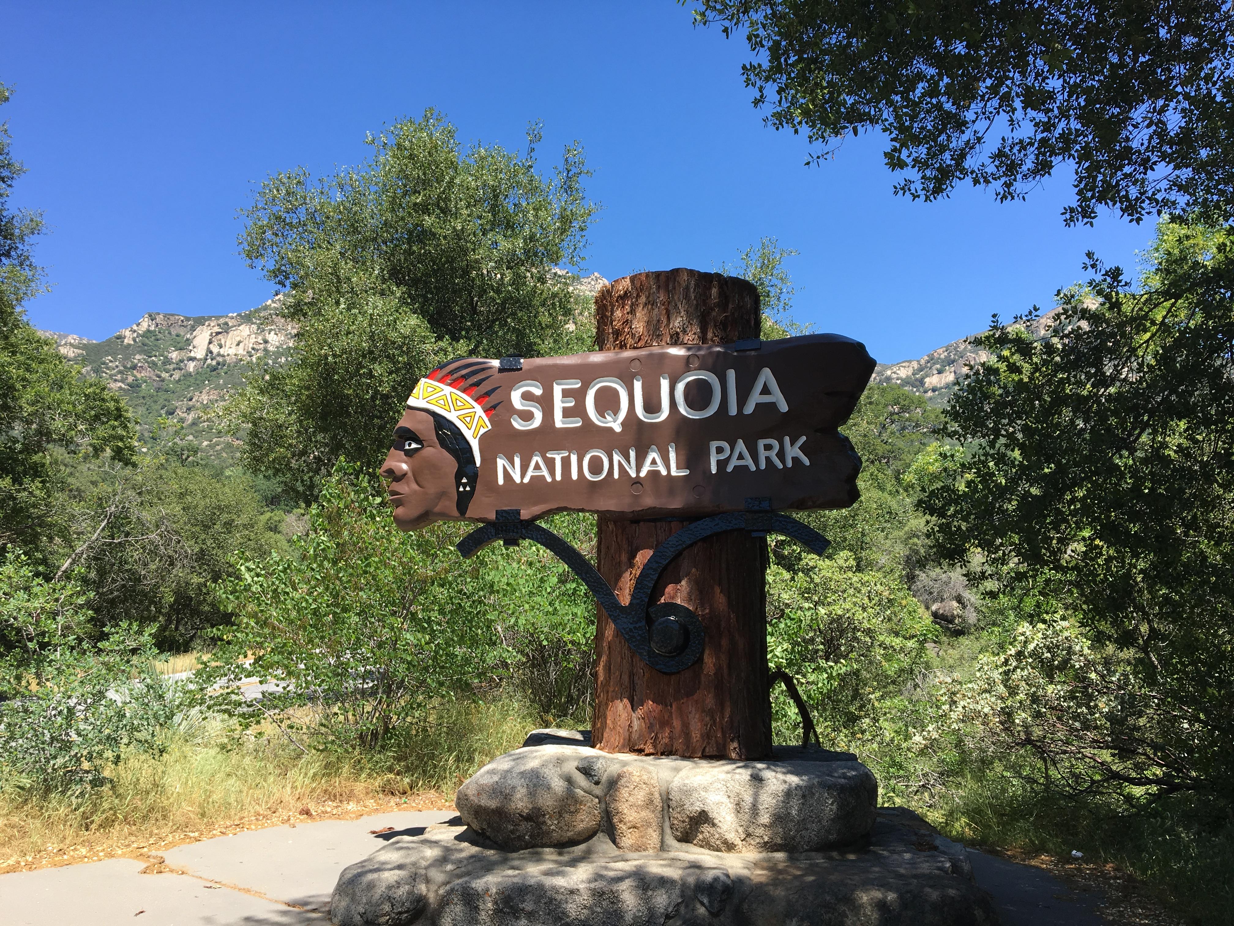 セコイア国立公園&キングスキャニオン国立公園に行く前に知っておきたい事